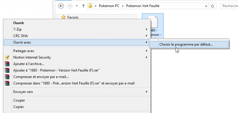 Choisir un programme par default - Pokemon